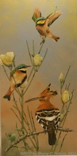 "10. Hoopoe, Little Bee-eaters, 10"" x 20"" - $235.00"