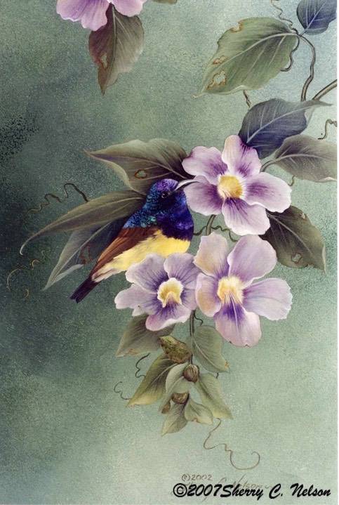 "21.  Sunbirds wwith Skyvine, 9"" x 12"", $195.00"