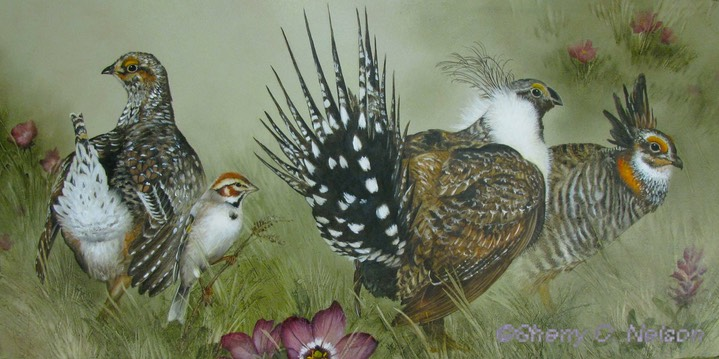 "4.  Three Grouse and Lark Sparrow, 20"" x 10"" - $295.00"