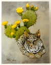 "#46.Bobcat & Prickly Pear, 14""x18"" - $7.00"