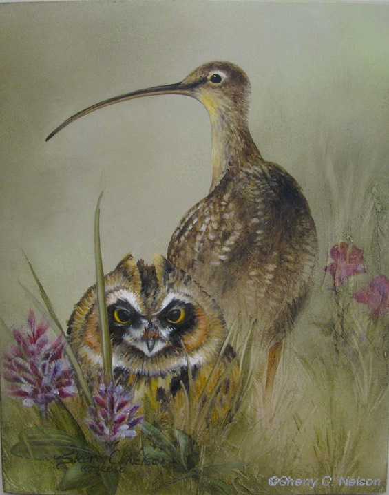 "5.  Long-billed Curlew & Owl, 8"" x 10"" - $145.00"