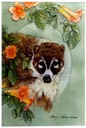 "#53.Coati in the Creeper, 11""x14"" - $5.00"