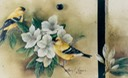 "American Goldfinches, 14"" x 11"", $8.00"